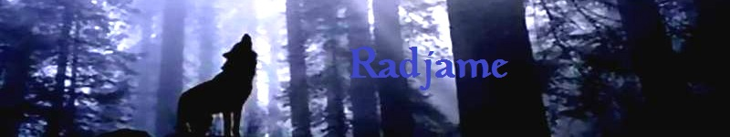 Le blog de Radjame