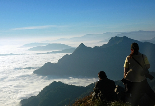 Chiang Rai Attractions: Sea mist of Phu Chi Fah