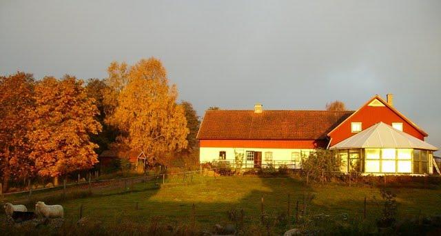 Det händer på Körsbärsgården - Ett lantliv!