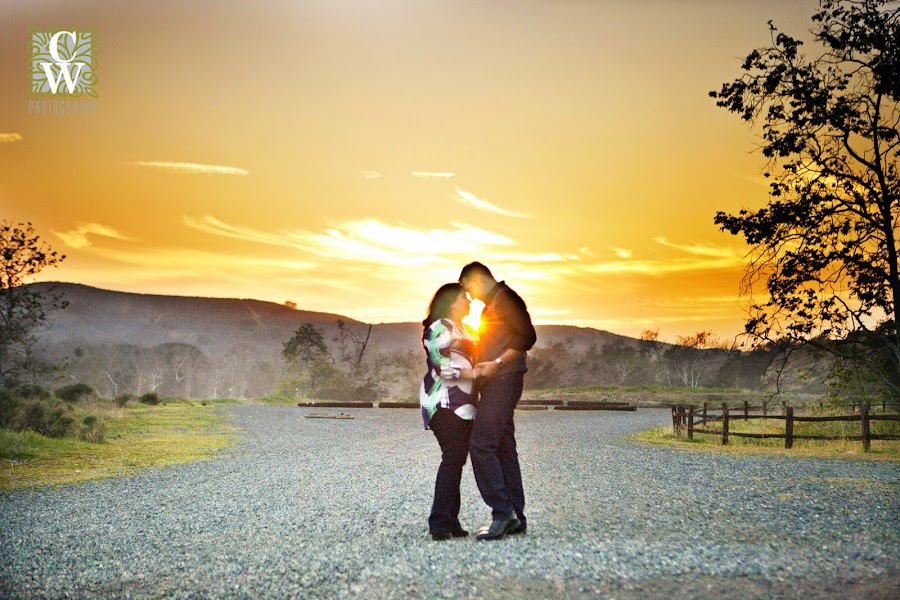 engagement portrait irvine regional park