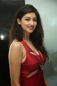 Tanvi Vyas latest glam pics-thumbnail-10