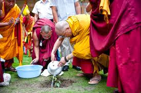 The Dalai Lama urges his followers to protect the environment by planting fruit trees