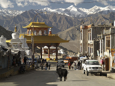 Kashmir Tour Operator