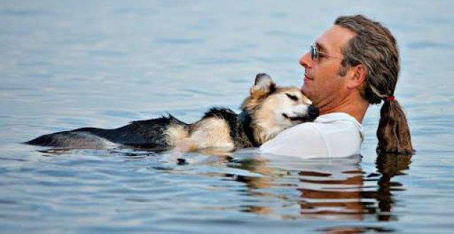 Cani che fanno il bagno elegant spiagge per cani dove for Cani che non vogliono fare il bagno
