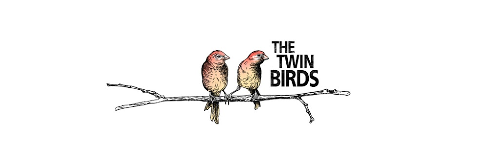 twin birds