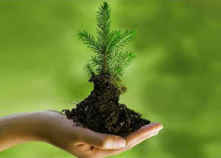 4 1 explain the importance of environment Supply chain sustainability is becoming increasingly important for companies   of their business to make sustainable, it is also one of the most important  while  all four aspects of sustainability are important, environmental.