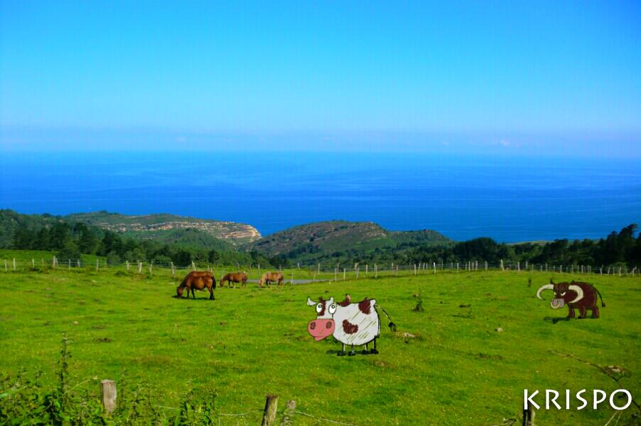 caballos, toro y vaca pastando en monte Jaizkibel de hondarribia