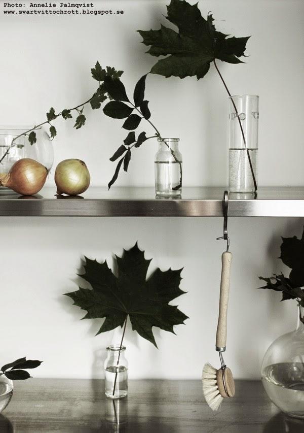diskborste av trä, stylingtips, kök, köket, hylla, diy, gröna blad,