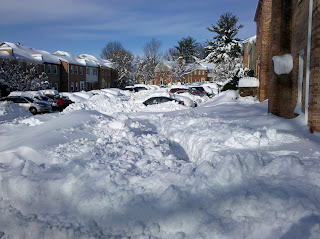neighborhood parking lot covered in snow
