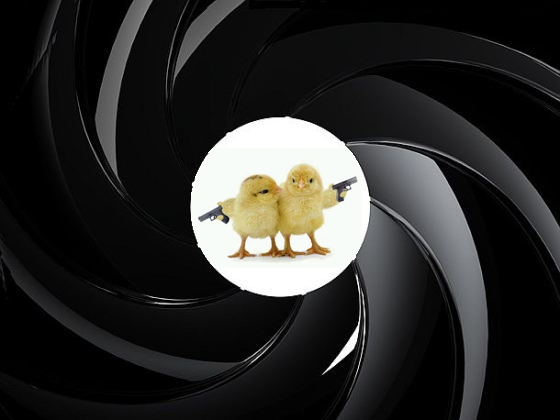 Bond chicks