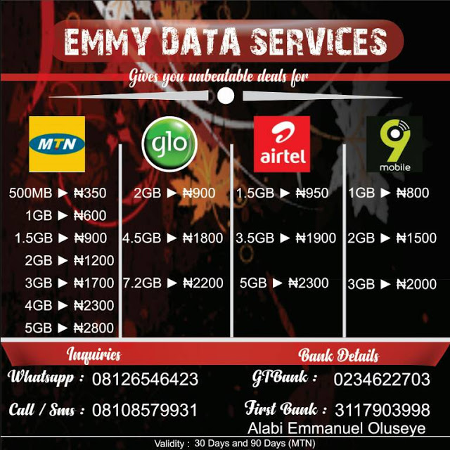 EMMY DATA SERVICES