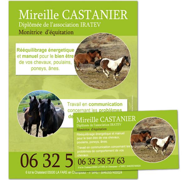 Carte De Visite Et Flyer Osteo Equin