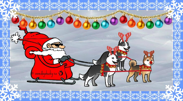 Santa Paws and his Siberian Husky Sled team