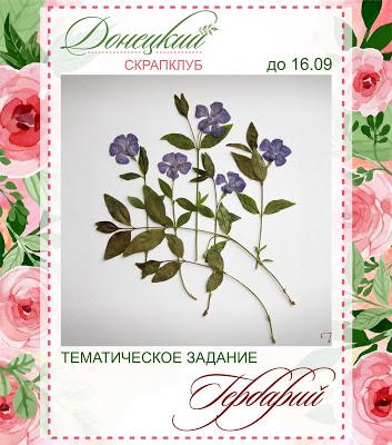 """Тематическое задание """"Гербарий"""" до 16/09"""