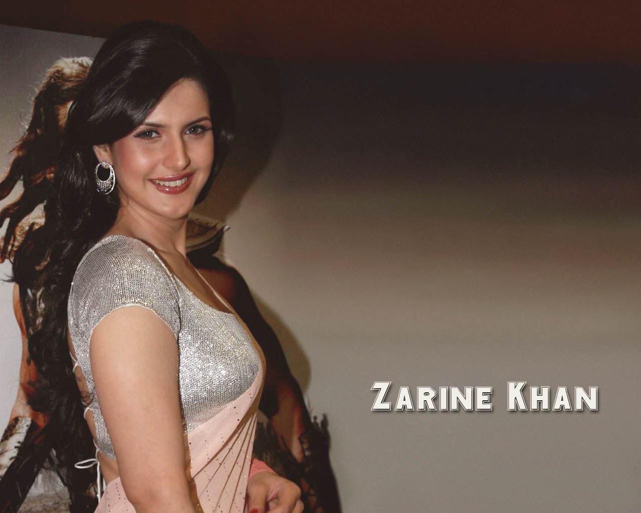 Zarine Khan Wallpapers Cute Beautifull