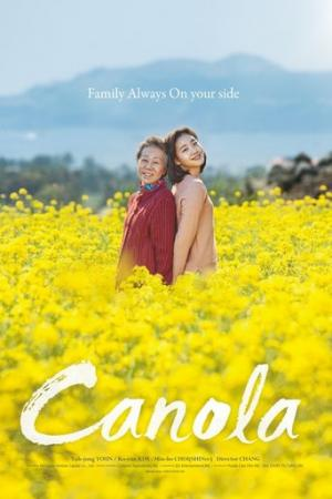Hoa Cải Vàng, Canola