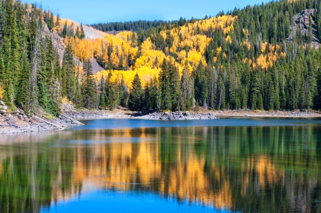 Autumn aspens among evergreens surrounding one of the mesa Lakes on the Grand Mesa in western Colorado. Grand Mesa National Forest is right next to the Bowie No. 2 Mine. (Credit: Shutterstock) Click to enlarge.