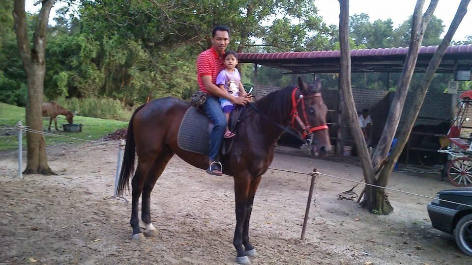 naik kuda di taman jubli kedah