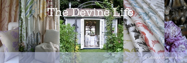 The Devine Life