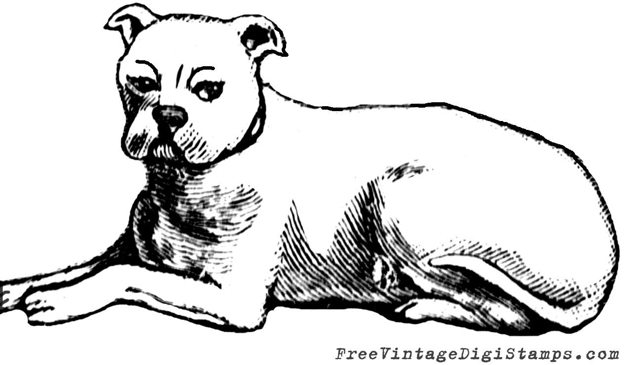 http://4.bp.blogspot.com/-gpv8CLiXylU/U4JxGEy7mVI/AAAAAAAAN_I/bIFPjaQGDSY/s1600/01_free+vintage+digital+stamp_dog_clip+art+image.jpg