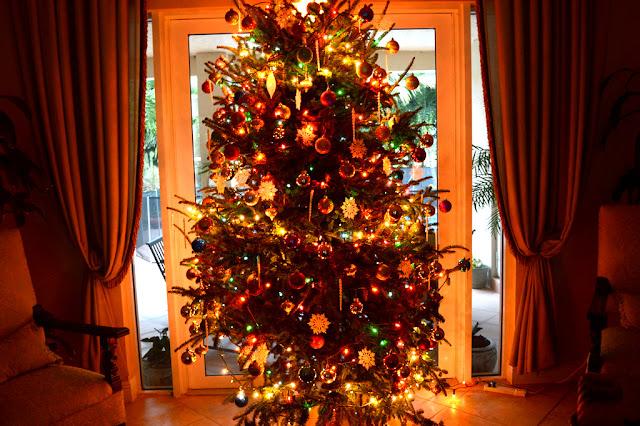 lit christmas tree