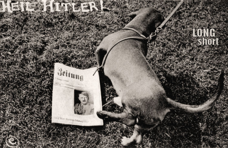 Veterans Day 2011 HEIL HITLER! & The Long and Short of it All: A Dachshund Dog News Magazine ...