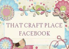 That craft place Facebook
