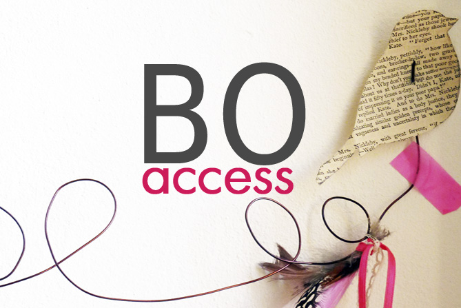 BO Access