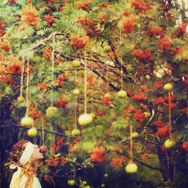 Lissy Elle fotografia