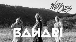 Bahari faz parceria com Zedd