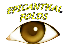 Epicanthal Folds Symptoms, Causes, Treatment, Surgery, FAQ's