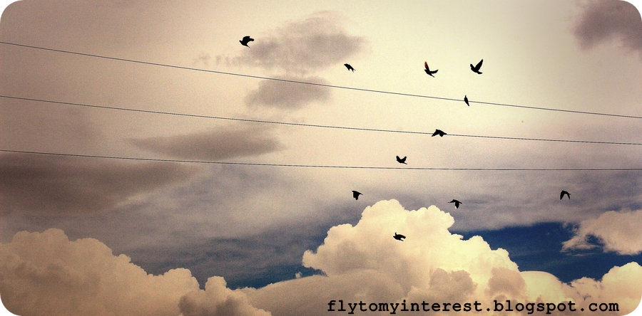 Fly to my interest