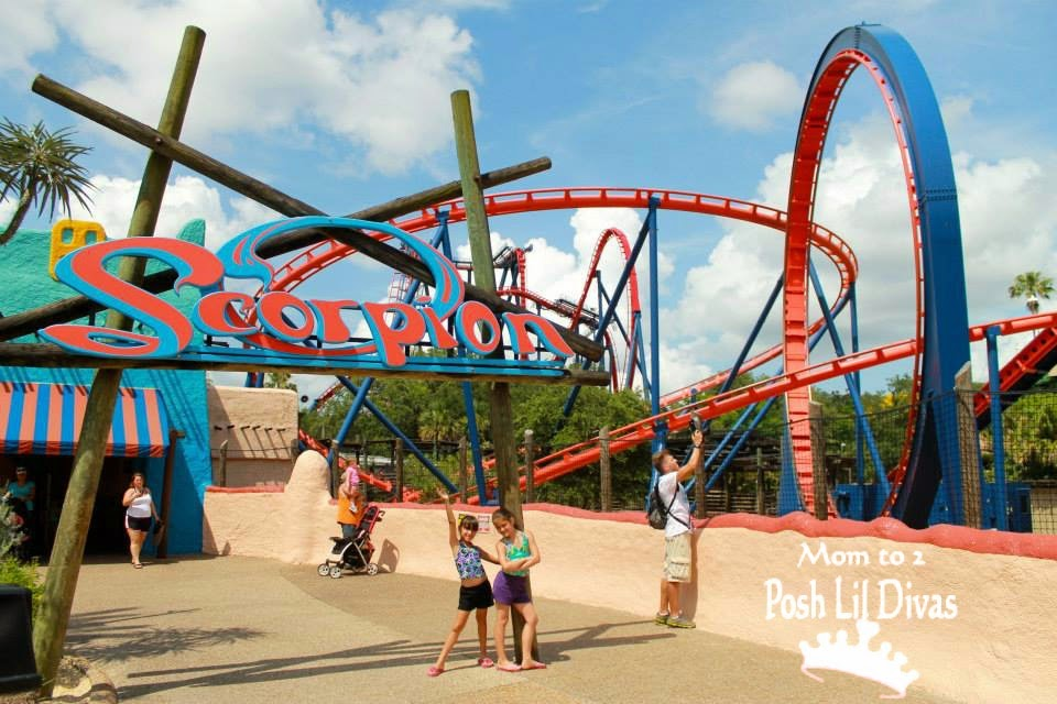 There Are Tons Of Attractions At Busch Gardens Tampa I 39 Ll