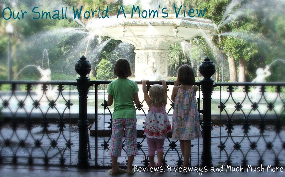 Our Small World: A Mom's View