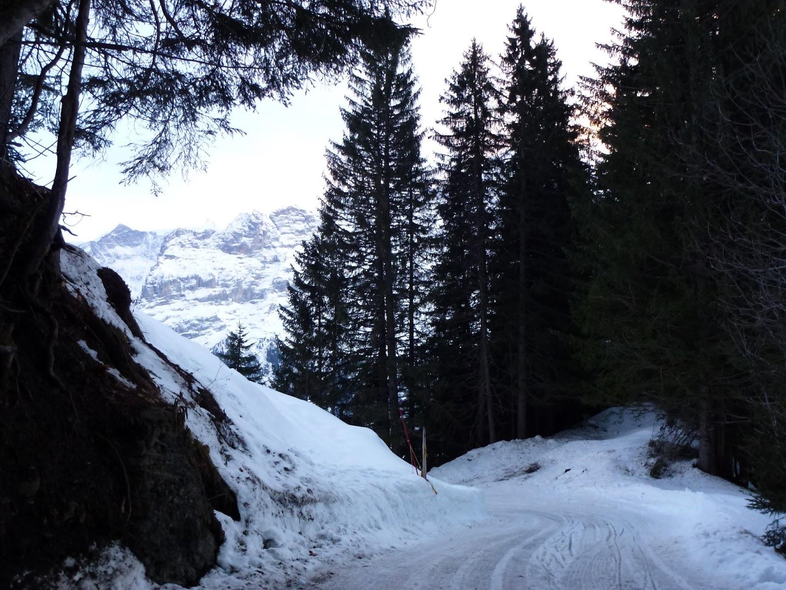 Wedding Village Sledging In Switzerland