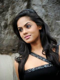 http://celebprofile.blogspot.com/2013/11/south-indian-actress-karthika-nair-hot.html