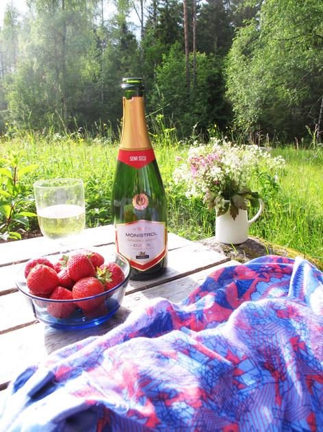 Suomen kesän herkut ja puuhat