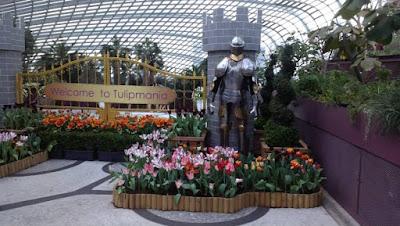 Singapore Memoir Part Two image