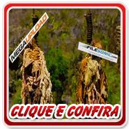 Clique ou fique Louco de Curiosidade - 5