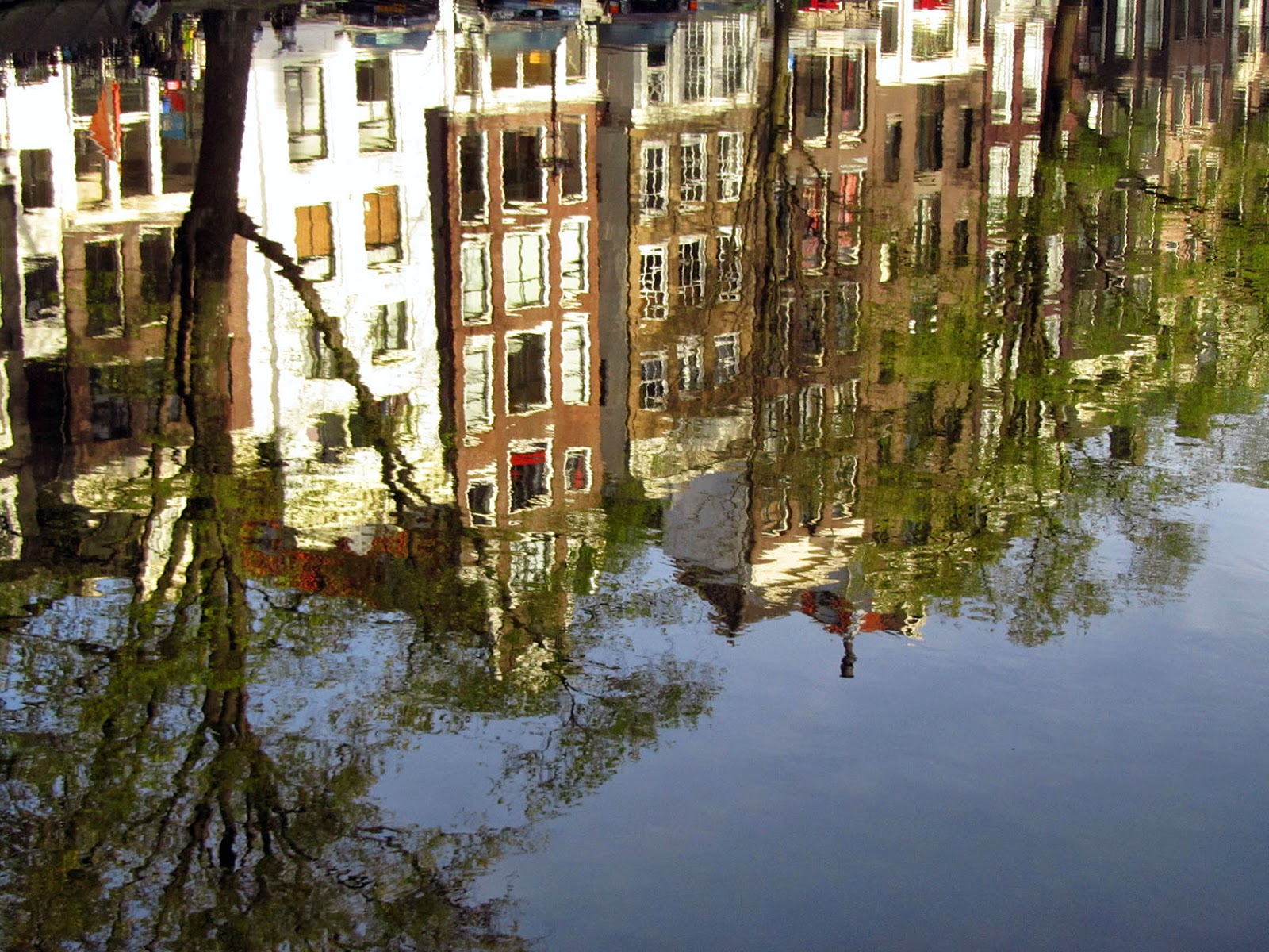 reflection of Amsterdam canal houses