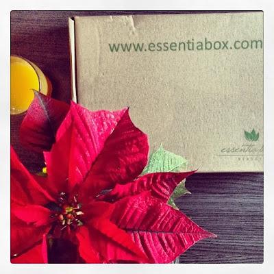 ¡¡Blanca Navidad!! La Essentia Box de Diciembre de 2013