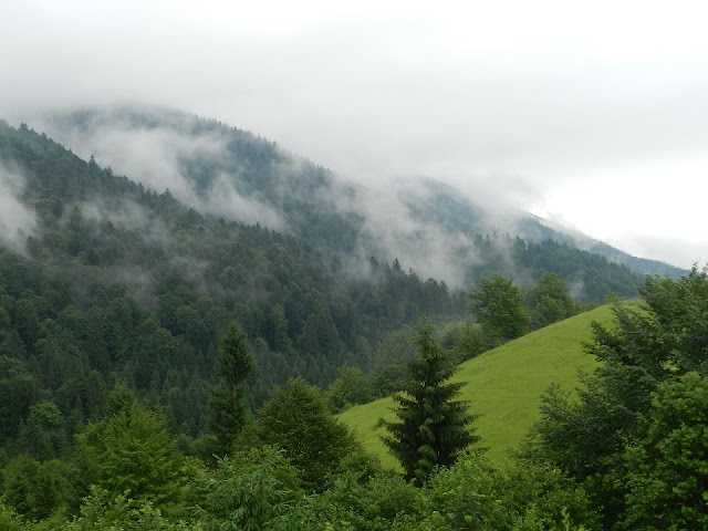 Ukrainian Carpathians