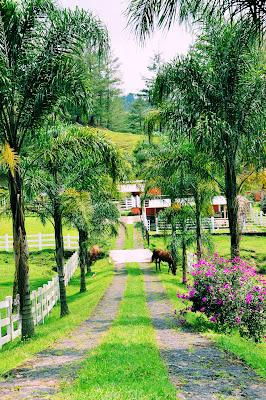 Un día de paseo por el rancho de Don José