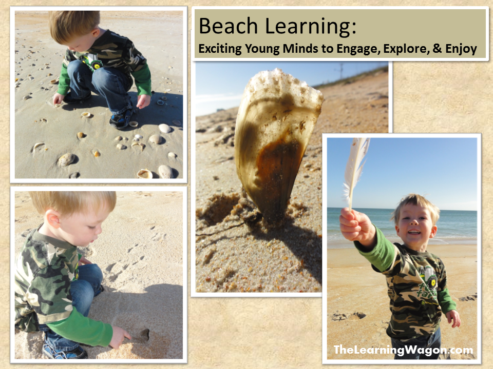 http://rvclassroom.blogspot.com/2014/01/beach-learning-exciting-young-minds-to.html