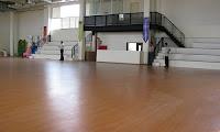 Parket+Lapangan+Badminton,+Bulutangkis+(1)