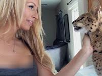 Unik, Kucing Afrika Ini Panggil Pemiliknya Mamma