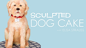 Sculptured Dog Cake, Discount and Giveaway!!