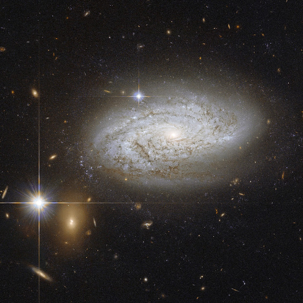 Spiral Galaxy NGC 3021