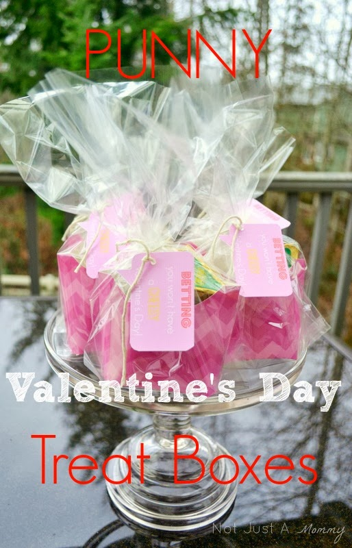 Punny Valentine's Day Treat Boxes