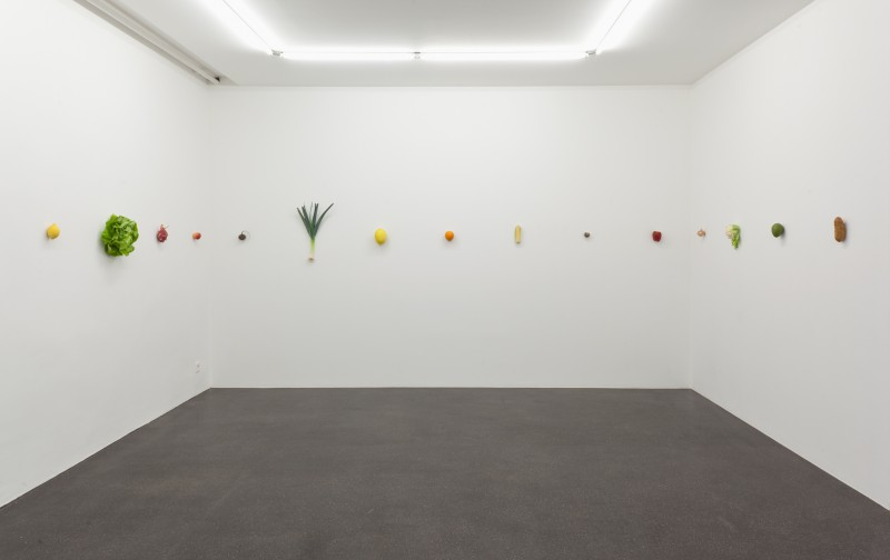 Installation view Barbara Gross Galerie, Munich Photo by Wilfried Petzi © Studio Karin Sander & VG Bild-Kunst, Bonn